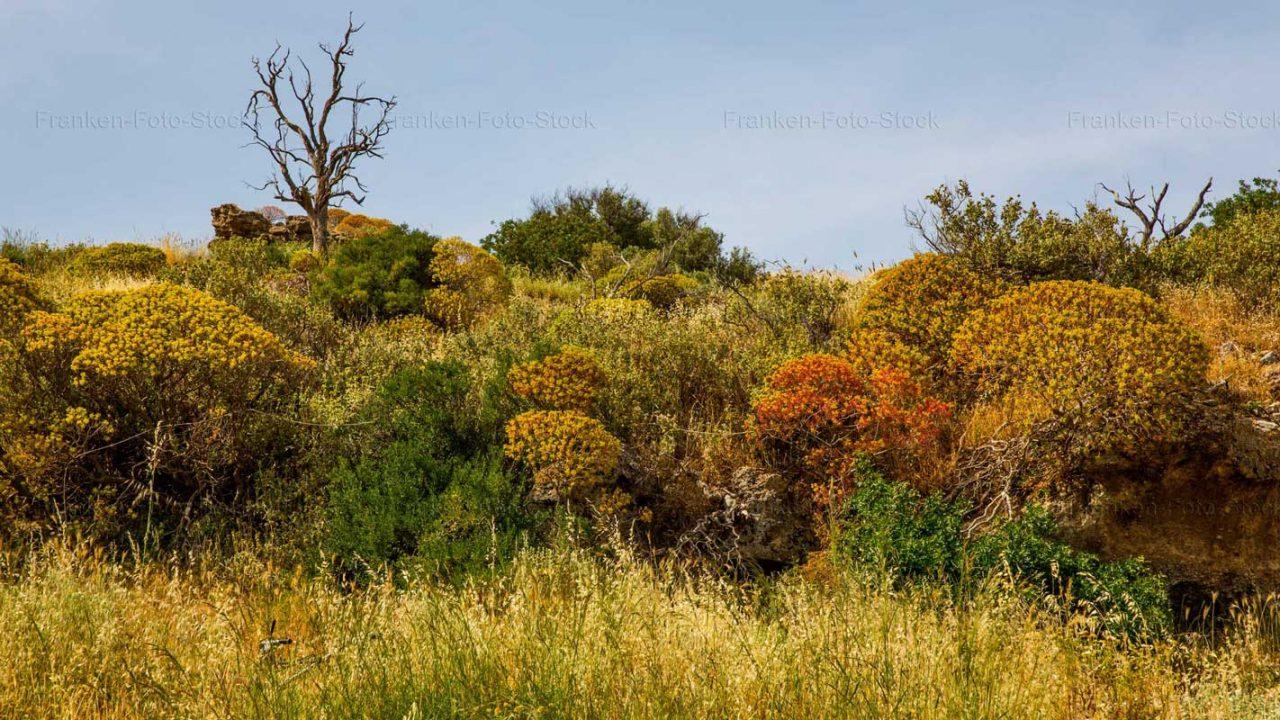 Naturparadies auf einer Wanderung Foto von Raimund Franken